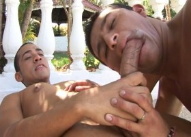 Reyes and Sal